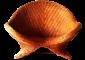 KRAKGRAF_TRENDDECO_meble_dekoracyjne